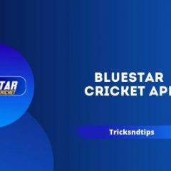 bluestar cricket apk mod download